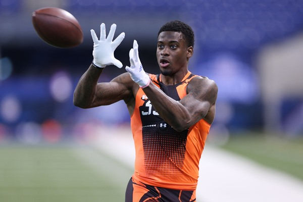 DeVante Parker Plays in Miami Dolphins Preseason Finale