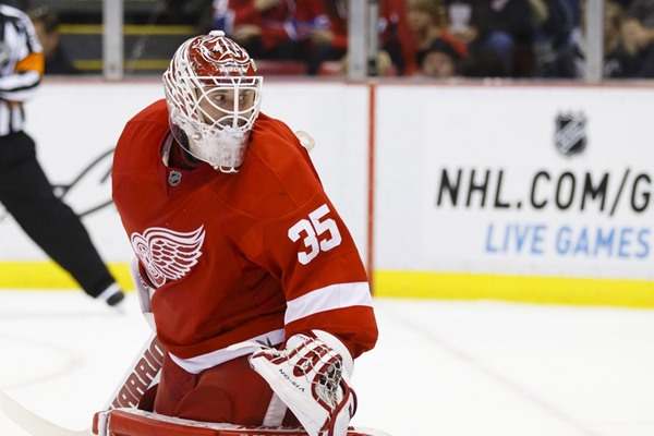 Daily Fantasy Hockey Picks: Nov 20, 2014